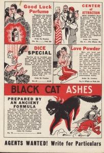 Lucky Black Cat interior 2
