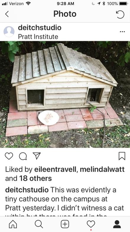 cat house Pratt.jpeg